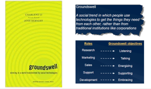 The Groundswell - Best Book of 2008